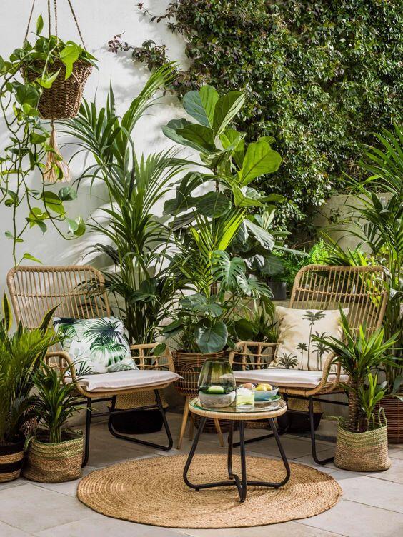 Frescor en una terraza con plantas